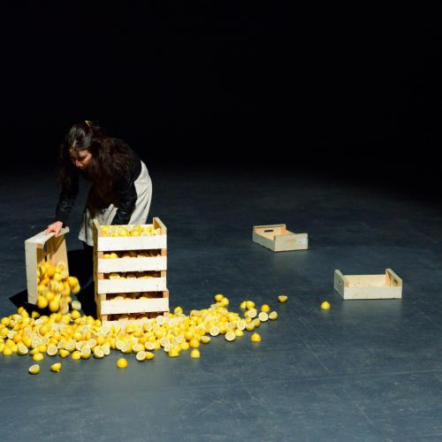 diaporama Les Citrons